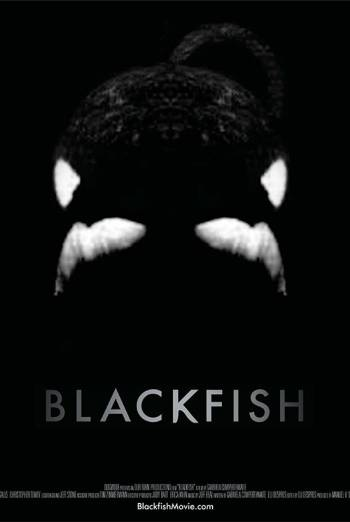 BLACKFISH artwork