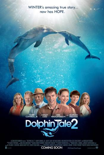 DOLPHIN TALE 2 artwork