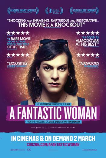 A FANTASTIC WOMAN <span>(2017)</span> artwork