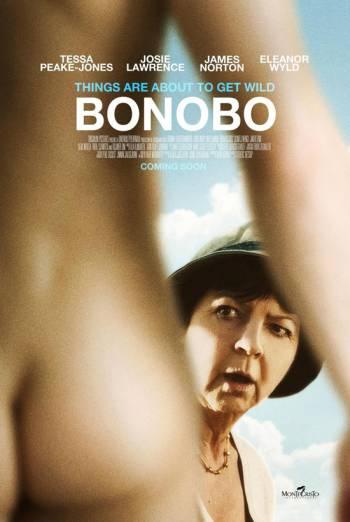 BONOBO artwork