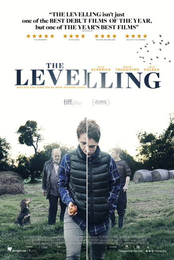 THE LEVELLING <span>(2016)</span> artwork