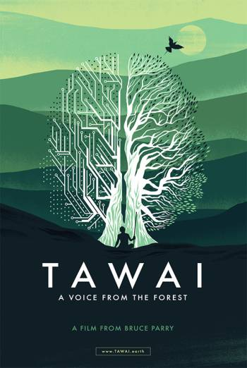 TAWAI - A VOICE FROM THE FOREST <span>(2017)</span> artwork