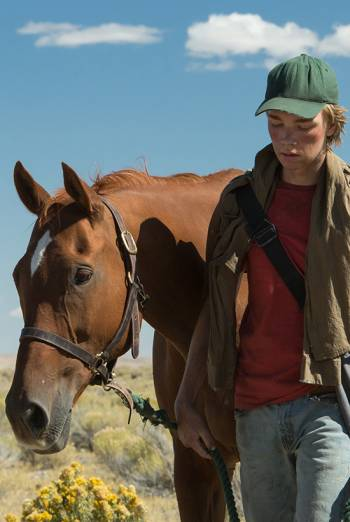 LEAN ON PETE <span>(2017)</span> artwork
