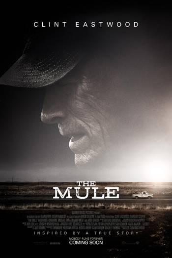 THE MULE artwork